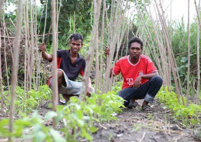 farmers-timor-small